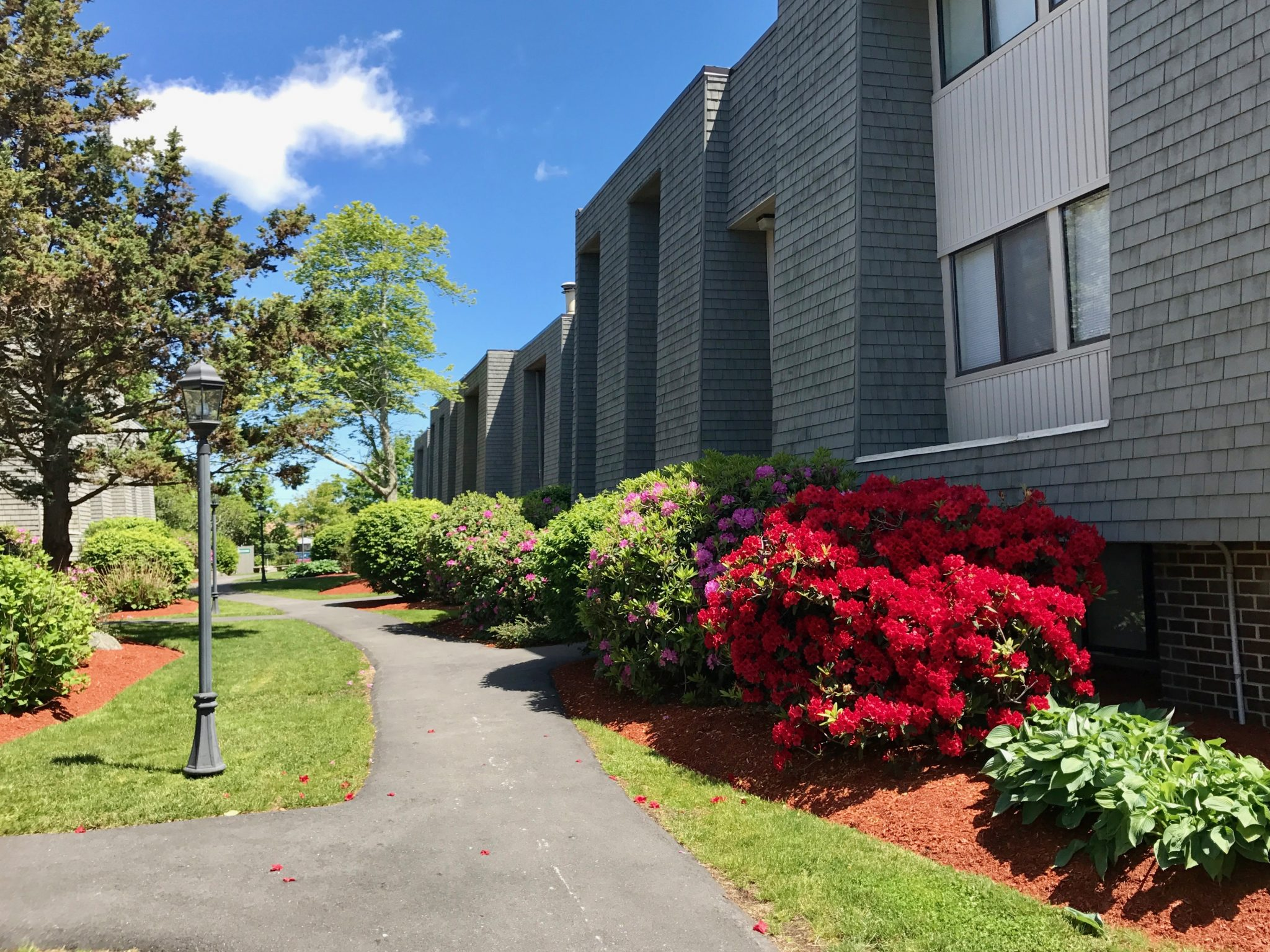 Hyannis: Apartments for Rent in Hyannis, MA - Hajjar Management
